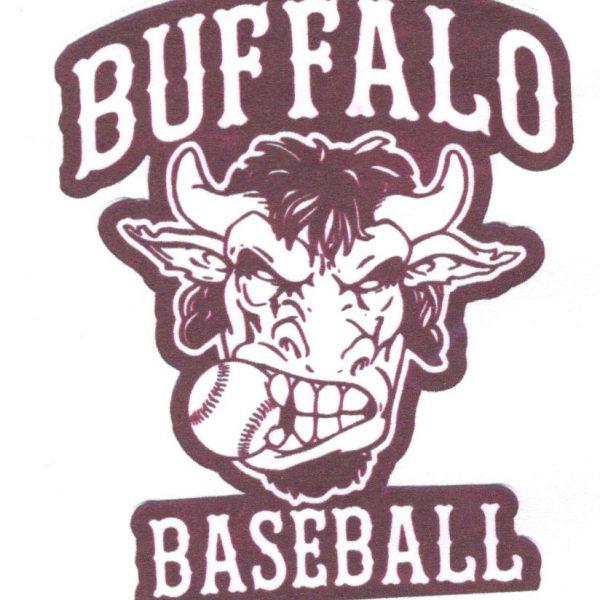 Bufaalo Baseball Logo