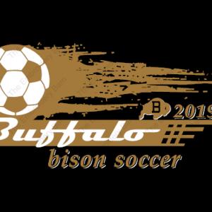 Bison Soccer 2019